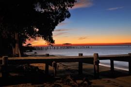 Lagniappe Photographer Gulf Shores Photographer Orange
